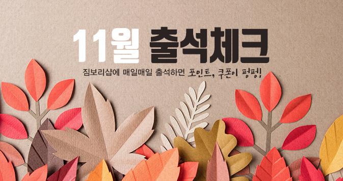 11월 출석체크