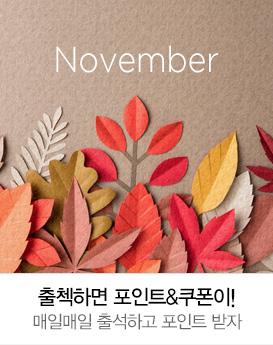 11월 출석체크 이벤트